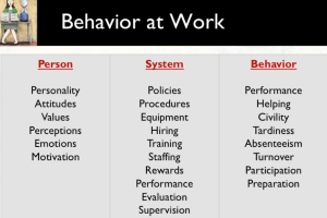 Understanding Behavior: A Critical Leadership Function