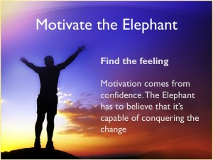 motivate the elephant