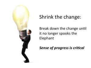 shrink the change